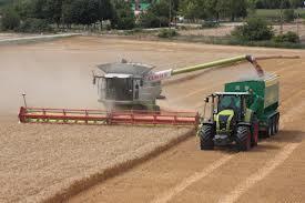 Joint venture farming